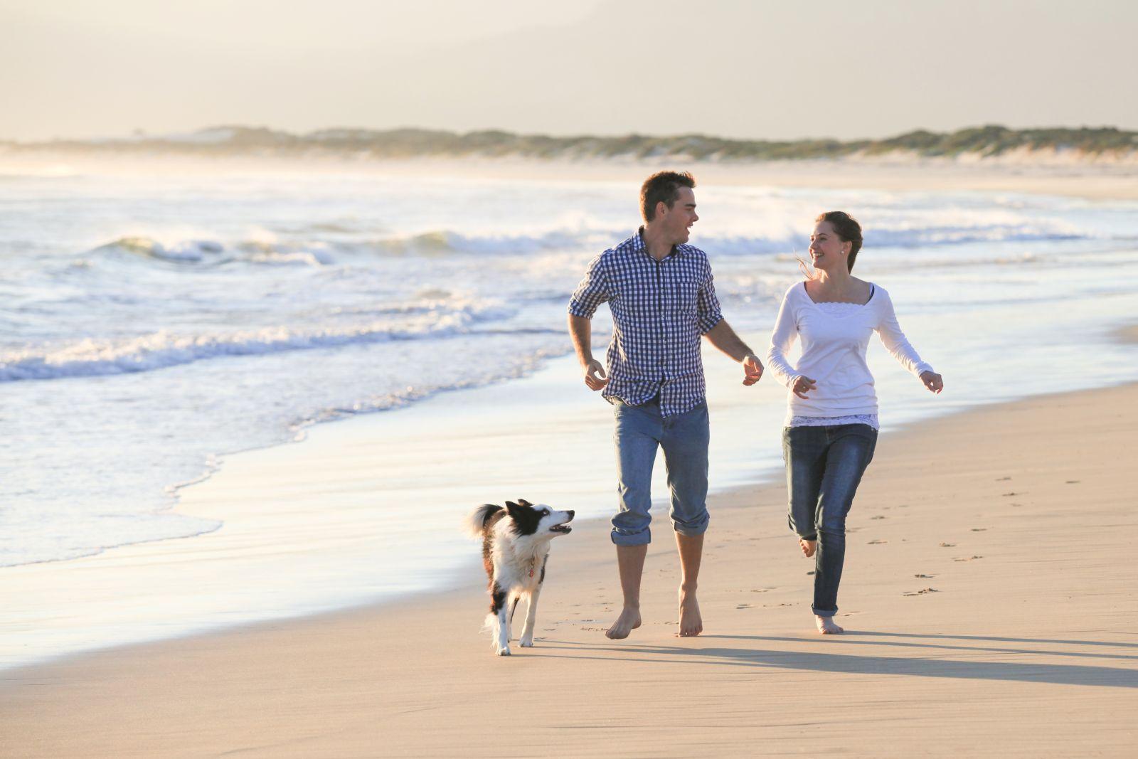 Urlaub mit hund mit dem hund auf norderney norderney infos for Urlaub auf juist mit hund