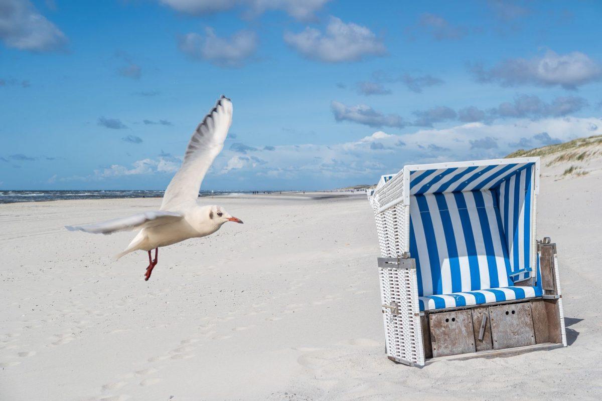 Höherer Strand soll Norderney vor Sturmfluten bewahren