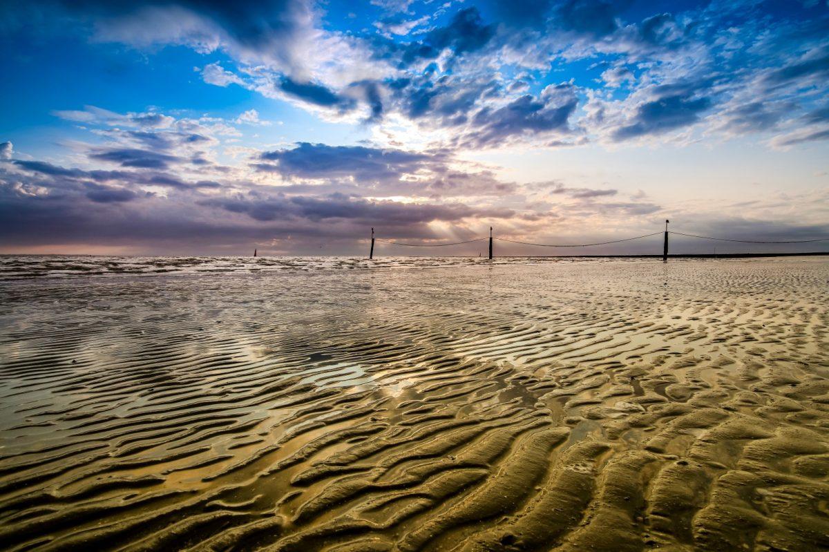 Insgesamt 85 Prozent der Fläche Norderneys gehören zum Nationalpark Niedersächsisches Wattenmeer.