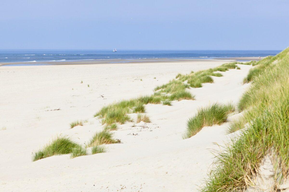 Norderney: Umzug der Forschungsstelle Küste verzögert sich